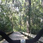 riding a bike through Palmetto Bluff equals bliss