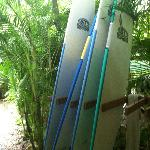 Daily surfboard rental, $10 for a day / $7 for the halfday