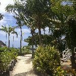 Path from cabana to food lodge