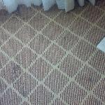 Stained Carpet in Room
