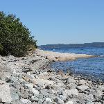 More shoreline.