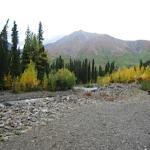 McKinley Creek