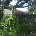 """Outside """"Live Oak Cafe"""""""