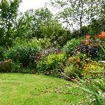 Moorland cottage plants #1