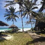 paradise beach 50 meters away