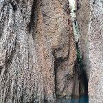 Scandola: Along the coastline