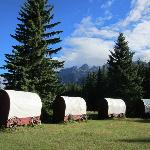 The covered wagons: a cool idea.