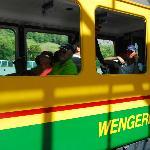 Cog train to Wengen