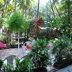 Zappia Cove Garden Sitout