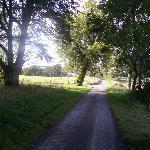A walk down the road