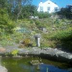 View of the house from the Fells rock garden