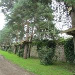 Tree course