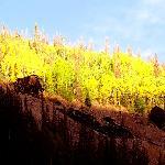 Hillside above mining ruins