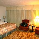 Large comfortable king room