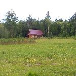 view looking towards the cabin #48 from across the meadow