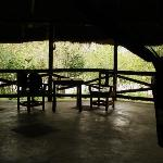 View from the tent on the Mara river