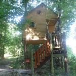 Au Milieu de Nulle Part - House in the trees - Outines Village