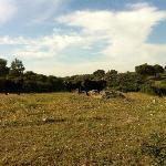 Photo of Casa Rural Orgullo Rural