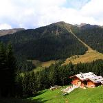 Chalet e bosco
