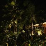 Vue du studio et de son jardin depuis la piscine, la nuit