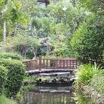 One of the picturesque little bridges on the grounds