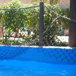 fence hanging down lazy river