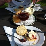 Cream Tea To Die For