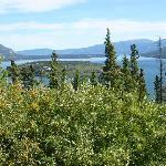 Bove Island, Yukon