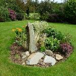 Moorland cottage plants #10