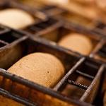 Pan Bread