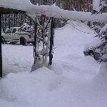 A snowy moring at the B&B