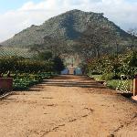 Babel hill