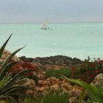 Bateau de pêcheur vu depuis le jardin
