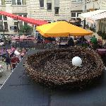 Big Bird nest above bar