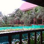 Jardin con mallas verdes