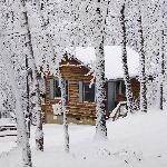 Foto de Ash Grove Mountain Cabins & Camping
