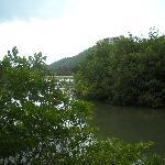 Vista de laguna desde el hotel