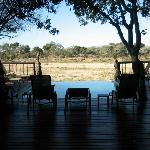 Pool area which overlooking the reserve. You can lay out and watch animals come by.