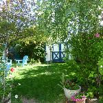 "The Hollyhock Guest House""s magical garden"