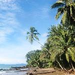 Beach at Corcovado Adventures Tent camp