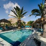 Jacuzzi pool under the palm trees..The perfect place to relax!