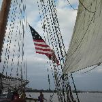 Pride of Baltimore II colors