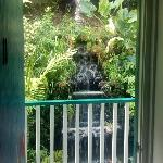 The waterfall in the back as seen out our room door.