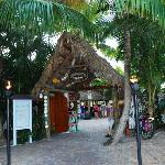 Entrance to Paradise - Square Grouper Tiki Bar