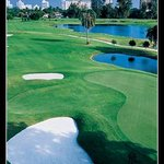 Foto de Miami Beach Golf Club