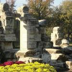 Tower Grove Park Foto