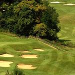 Manor House Golf Club Picture