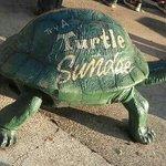 Turtle Sundaes are here!