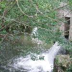 Creek / swimming area at Manor Farm
