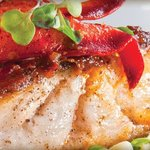 Pan Seared Fish of the Day